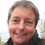 Profile picture of Jo Dawes